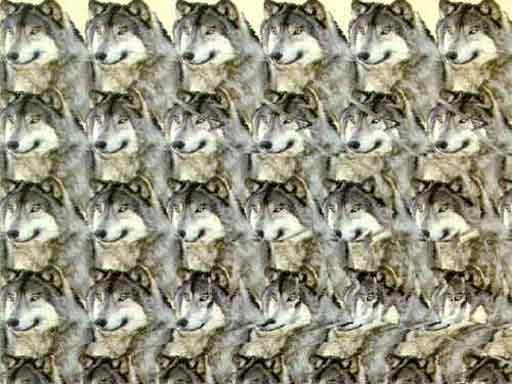 Стереокартинка волк воет на луну