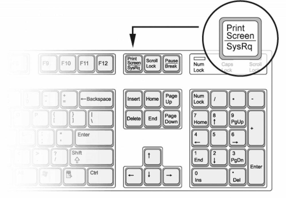 Расположение кнопки PrintScreen